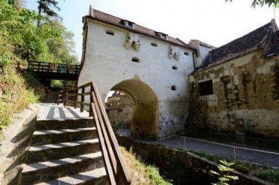 (COD 3324)  Bastionul Graft