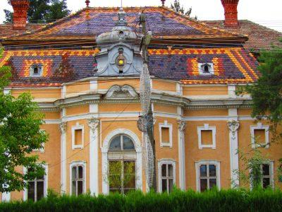(cod 4407)  Castelul Schulkowsky din Pâncota
