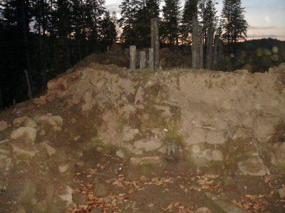 (cod 5209) Cetatea Ilenei Cosanzene