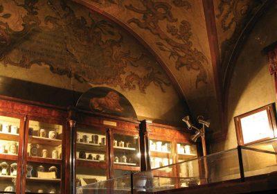 (cod 4870) Colecția de Istorie a Farmaciei