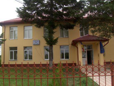 (cod 5332) Comuna Vișina