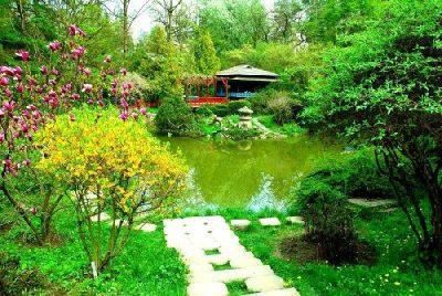 (cod 4889) Grădina Botanică Cluj