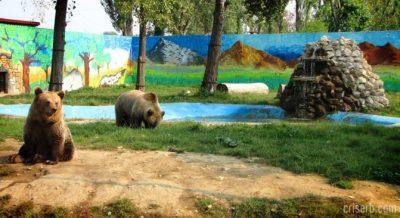 (cod 5334) Grădina Zoologică, Târgoviște