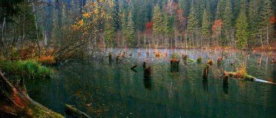(cod 2715) Lacul Roșu