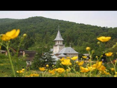 (COD 5451)   Mănăstirea Sfântul Sava, Berzunți