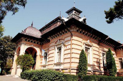 (cod 6319) Palatul Mavrocordat, Vaslui