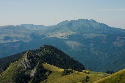 (cod 3182) Parcul Natural Munții Maramureșului