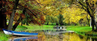 (cod 5518) Parcul Nicolae Romanescu