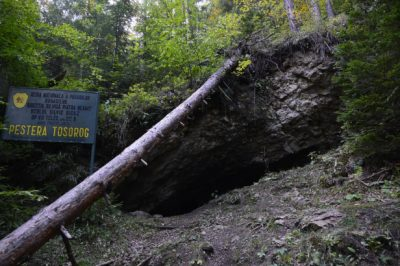 (cod 2807) Peștera Toșorog