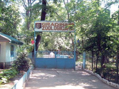 (cod 3948) Rezervația și Grădina Zoologică Gârboavele