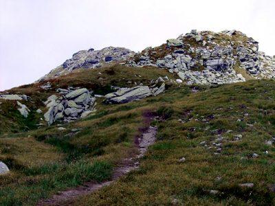 (cod 3186) Rezervația Biosferei Pietrosul Rodnei,(Borșa)