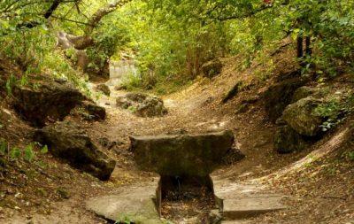 (cod 5048) Rezervația Naturală Fântânița, Murfatlar