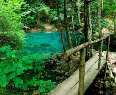 (cod 2460) Rezervația naturală Cheile Susarei, Sasca Montană