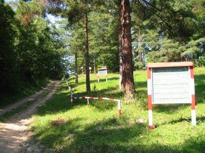 (cod 4274) Rezervația naturală Pădurea Cenaru