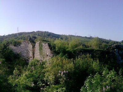 (cod 2461) Ruinele Cetății Carașova, Carașova