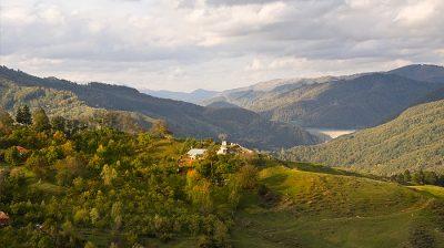(cod 3781) Valea Doftanei