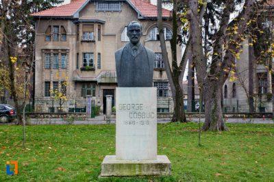 (cod 3865) Bustul lui George Coșbuc din Parcul Astra