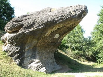(cod 3866) Calcarele cretacice de la Cișnădioara