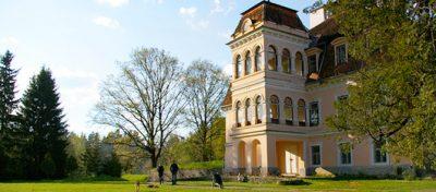(cod 5205)  Castelul Mikes