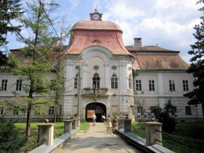 (cod 5920)  Castelul de la Gorneşti
