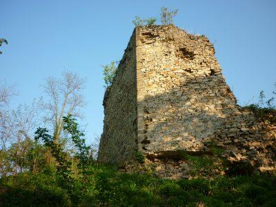 (cod 2403) Cetatea Cuiești, Bocșa