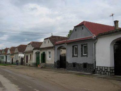 (COD 3309) – Crizbav – Brasov
