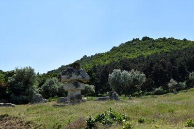 (cod 6603) Dealul Koyun Baba