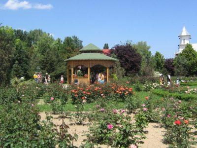 (cod 3928) Grădina Botanică