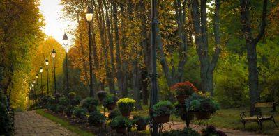 (COD 2048) – Gradina Botanica Iasi