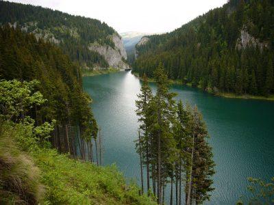 (cod 5335)  Lacul Bolboci
