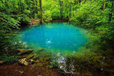 (cod 2443) Lacul Ochiul Beiului, Cheile Nerei
