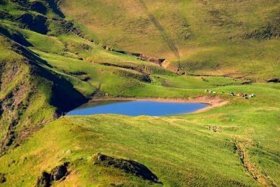 (cod 3161) Lacul Vinderel, Poienile de Sub Munte