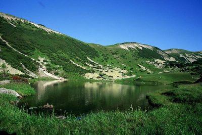 (cod 2451) Munții Țarcu