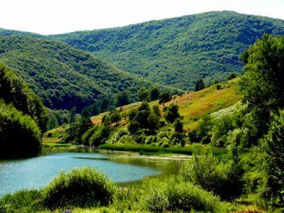 (cod 2450) Munții Aninei
