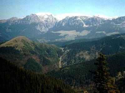 (cod 5341) Munții Leoata