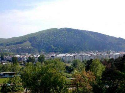 (cod 2782) Muntele Cozla