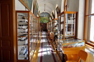 (cod 4918) Muzeul Universității Babeș Bolyai