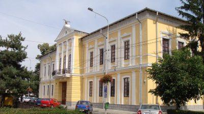 (cod 2614) Muzeul de Istorie şi Arheologie Alexandru Ştefulescu