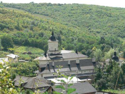 (COD 2160) – Padurea Cetatuia-Hlincea Iasi