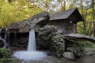 (cod 2455) Parcul Morilor de Apă, Eftimie Murgu