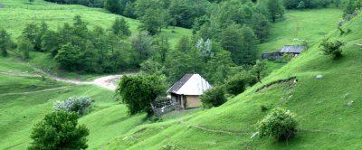 (cod 3653) Parcul natural Putna din Vrancea