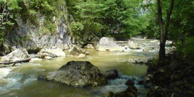 (cod 5218) Rezervaţia Naturală Cheile Vârghişului