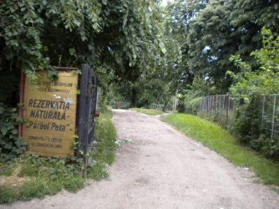 (cod 2515)  Rezervaţia Naturală Pârâul Peţa