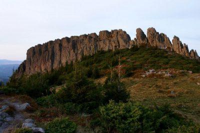 (cod 3187) Rezervația Naturală Creasta Cocoșului