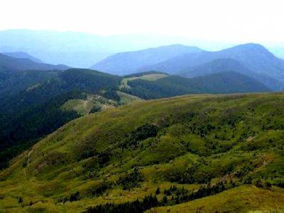 (cod 3654) Rezervația naturală Pârâul Bozu
