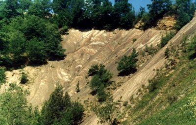 (cod 3655) Rezervația naturală Strâmtura Coza