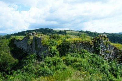 (cod 3769) Rezervația naturală paleontologică Plaiul Hoților
