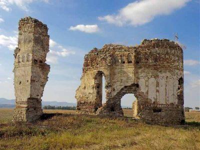 (cod 2811) Ruinele bisericii din Buciuleşti