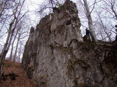 (cod 4728)  Zidul Uriașilor